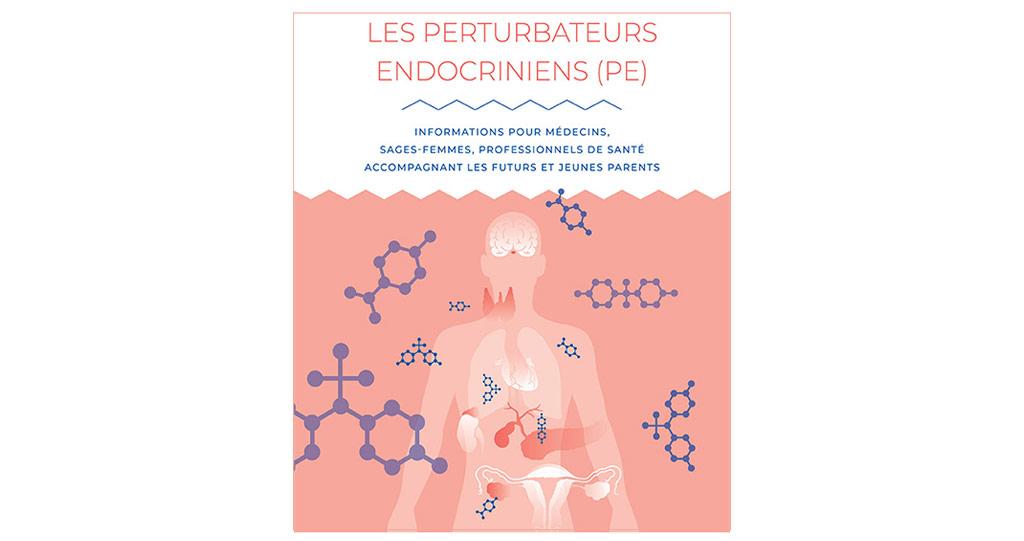 Focus sur les perturbateurs endocriniens : un guide à l'attention des professionnels